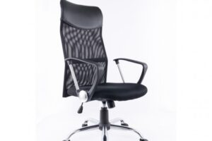 Office/ Study Chair